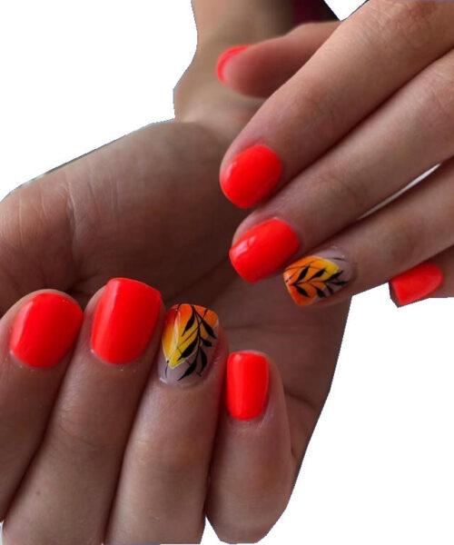 mani di donna con unghie corte colorate dopo manicure e pedicure